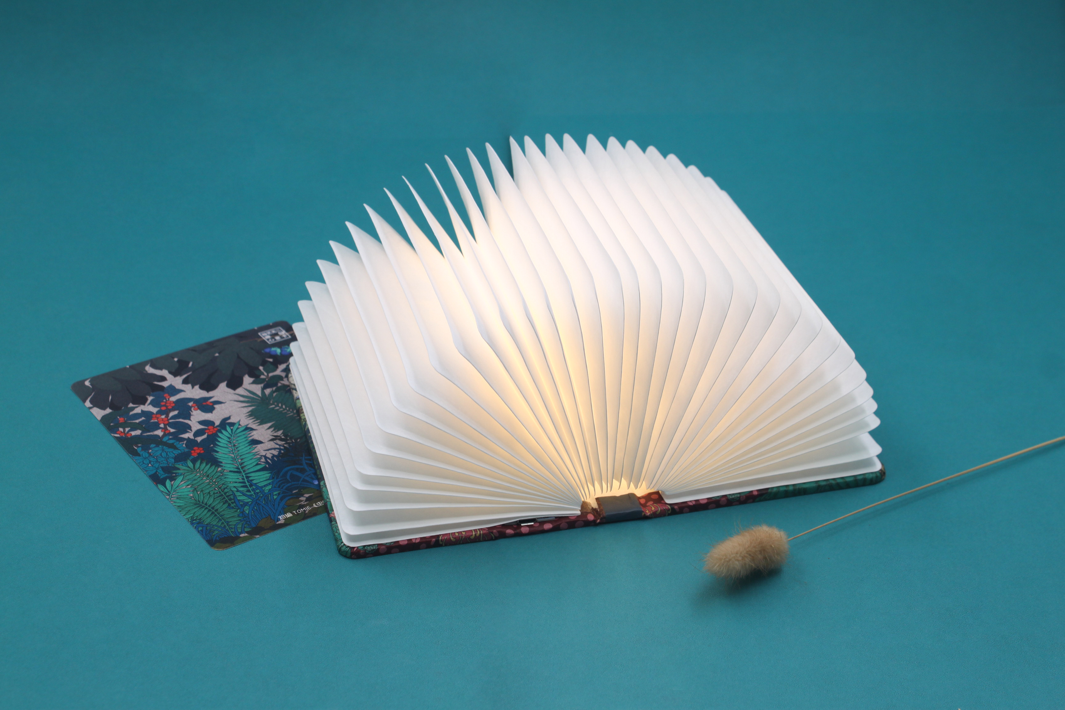 Retail product  book lamp